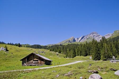 Hut in Rosenlauital in Switzerland