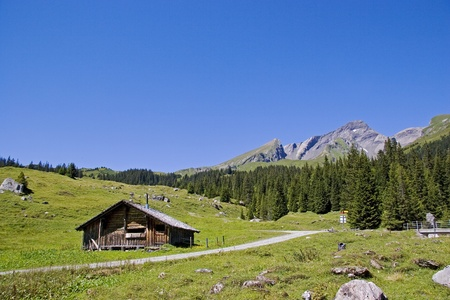 canton berne: Hut in Rosenlauital in Switzerland
