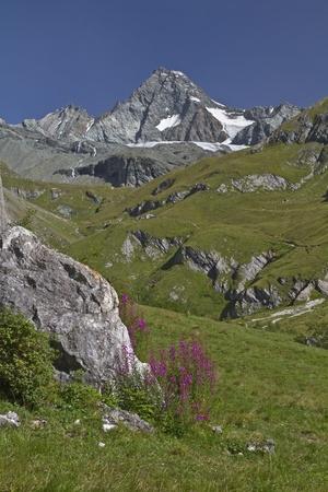 grossglockner: In Koednitz valley - view to Grossglockner