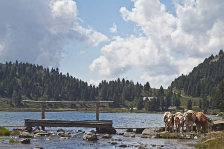 calving: Obersee - lake in East Tytol Stock Photo