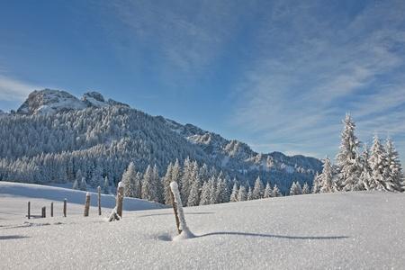 deep powder snow: winterlandscape Stock Photo