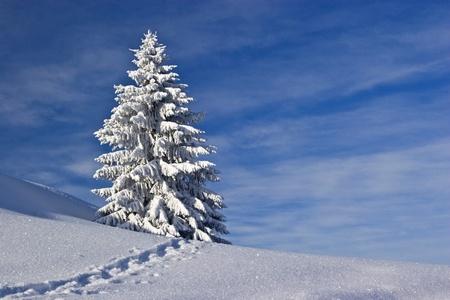 deep powder snow: Leading footprint uphill through virgin powder snow  Stock Photo
