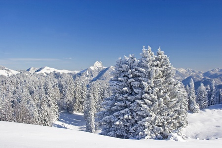 deep powder snow: winter landscape in Upper Bavaria Stock Photo