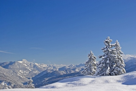 deep powder snow: Winter Landscape  in the mountains of Tegernsee