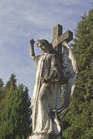 Angel statue in an old cemetery photo