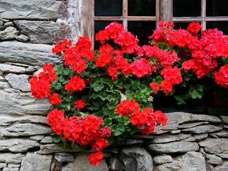 Lovingly decorated windows of an Italian farmhouse in the Valaisenischen Bauernhaus im Wallis
