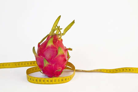 consciously: Cactus flower with a yellow tape measure