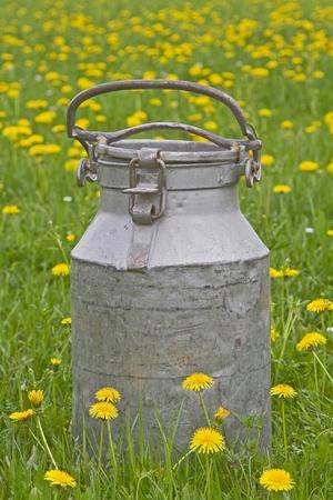 commonplace: Vecchia brocca in piedi il latte in prato fiorito