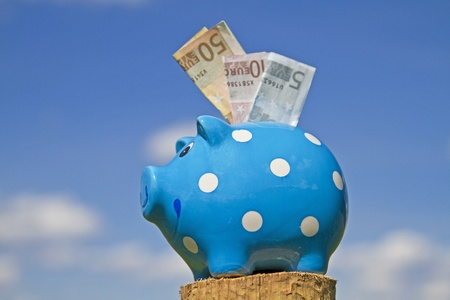 commercialism: Piggy bank and bank notes