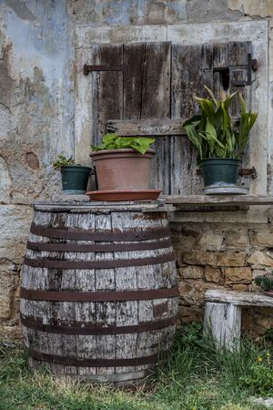 ton: Still life with wooden barrels before old dilapidated house in Croatia