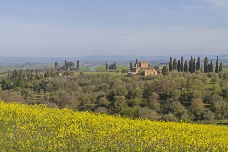 val: Landscape in Val di Orcia Stock Photo