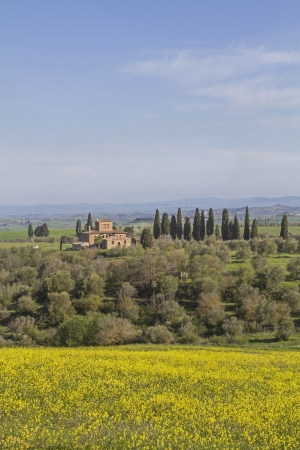 orcia: Tuscany landscape in valley Orcia