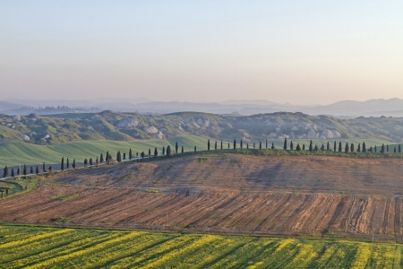 Early morning in typical Tuscany landscape photo