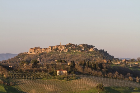 montepulciano: Montepulciano in evening Editorial