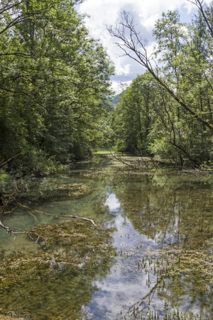 inflow: Pure nature at Tegernsee inflow Weissach