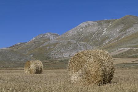 castelluccio: Hay balls on the Piano Grande in the Sibillini Mountains Stock Photo