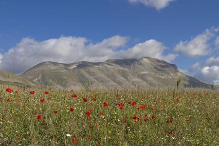 sibillini: Piano Grande in Sibillini mountains