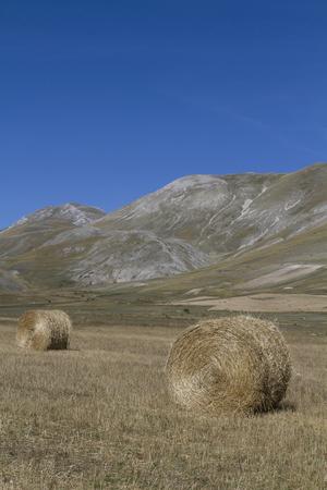 sibillini: Hay balls on the Piano Grande in the Sibillini Mountains Stock Photo