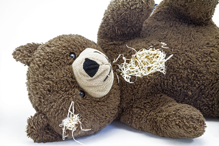 torn: Teddy bear, worn and old - loyal and indispensable companion of many children