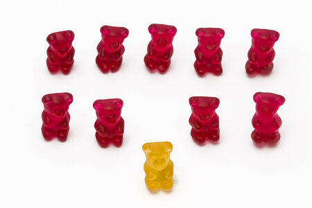 Symbolic picture with gummy bears - Chef on the top of his team