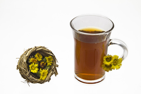 solver: Coltsfoot tea is an important natural remedy for coughs