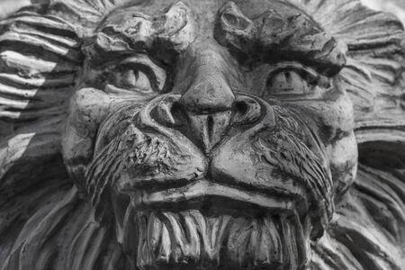 leu: Close-up of a lion portrait in stone