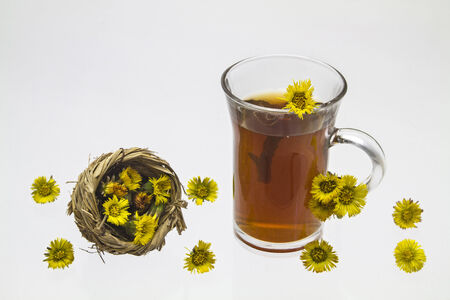 solver: tea from Tussilago farfara
