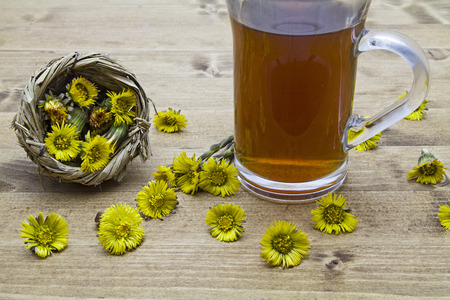 solver: Tea from Tussilago plants