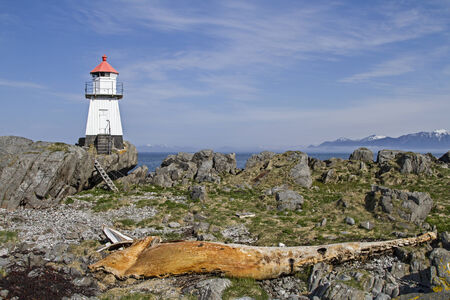 cadaver: Whale cadaver with lighthouse on the northern tip of the Lofoten island  Gimsoya  Stock Photo