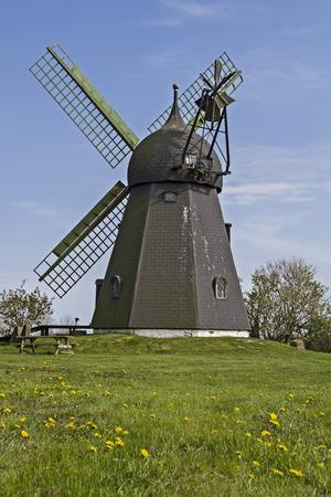 traditional windmill: Traditional windmill in Jutland in northern Denmark