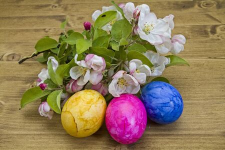 Easter still life with colored easter eggs and flowering branches on wooden background photo