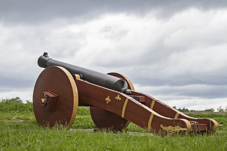 Cannon on the ramparts