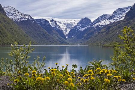 dandelion snow: Passing the idyllic Oldevatnet one arrives to the Brikdalsbreen