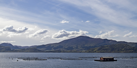 The Norwegian aquaculture is often based on net pens in the open ocean or in bays and serves mainly the breeding of salmon