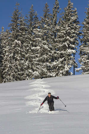 deep powder snow: Lone skiers wagging through the untouched snow down