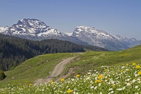 mountain pass: Highest point of the Pragelpass, a relatively unknown mountain pass in central Switzerland