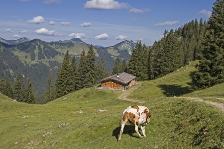 overnight stay: Lower Wildfeldalm - idyllic mountain lodge at you pass the increase to Rotwand summit Stock Photo