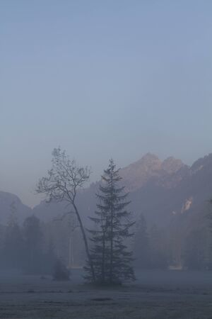 ettal: Morning mist in Ettal Weidmoos in Ammer valley