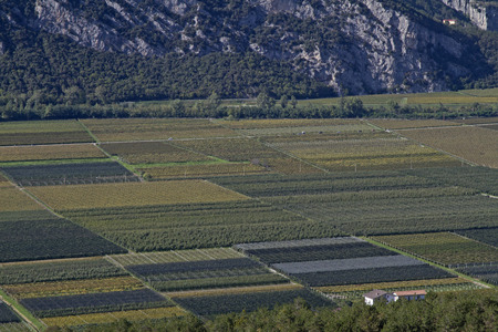 The fertile Sarca Valley a center for agricultural use Reklamní fotografie