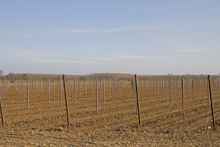 the po valley: Early spring - huge fields awaiting cultivation