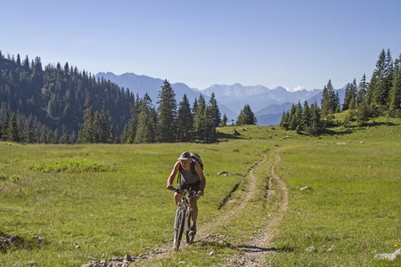 pastureland: In the combined mountain and bike tour our way leads across this idyllic pastureland