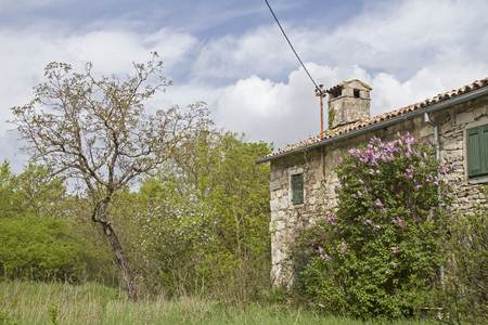 characterize: Abandoned, often only weekend used and partly dilapidated houses idyllic overgrown with plants characterize the idyllic landscape in Istria Stock Photo
