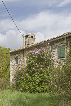 unoccupied: Abandoned, often only weekend used and partly dilapidated houses idyllic overgrown with plants characterize the idyllic landscape in Istria Stock Photo