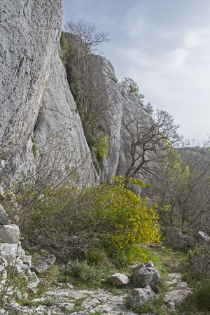 the crags: Crags Dvigad  in spring time