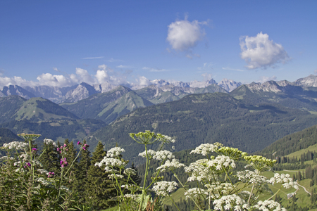 cicuta: Views of the highest peaks of the Karwendel Mountains Foto de archivo