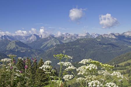 cicuta: Views of the highest peaks of the Karwendel Mountains Foto de archivo
