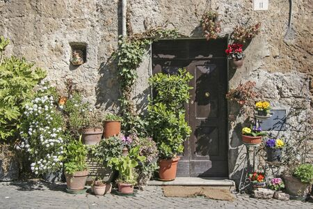 lovingly: Lovingly decorated with flowers - Front door in Orvieto
