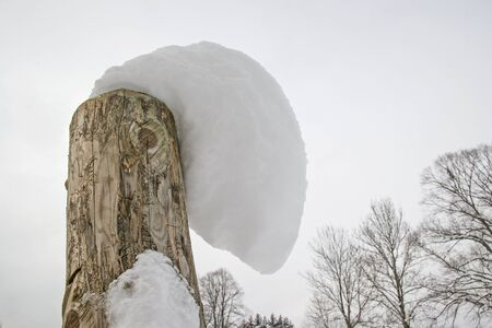 curiously: Curiously shaped snow cap of a tree trunk fragment
