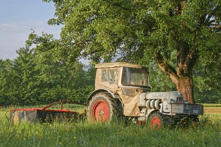 Alter Traktor steht auf einer Wiese unter einem Apfelbaum Stock Photo