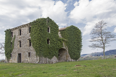 Abandoned and dilapidated houses idyllic overgrown with plants characterize the idyllic landscape of Istria Фото со стока